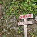 Photos: TON05904夕日の滝