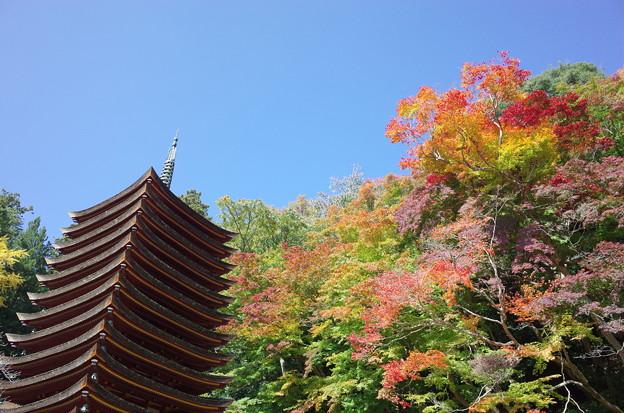 談山神社の秋