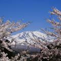 写真: 春山を望む