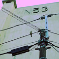 Photos: 電線