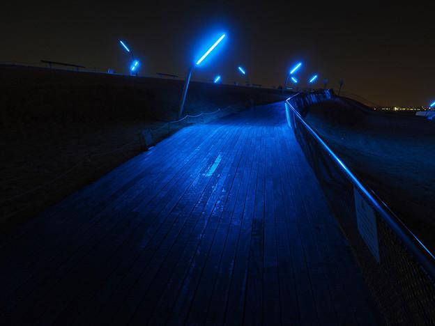 真夜中へ向かう坂道