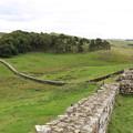 Photos: 1556 ハドリアヌスのローマ壁@イギリス
