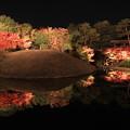 2502 朱雀の庭のライトアップ@京都
