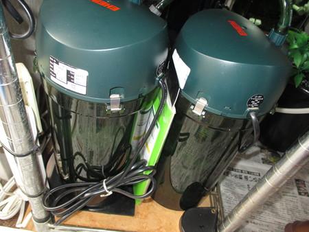 20151107 60cmコリドラス水槽の掃除