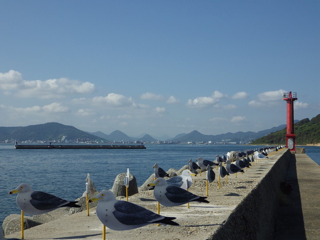 女木島 カモメの駐車場