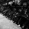 写真: 自転車置き場