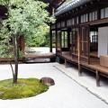 写真: 〇△□の庭