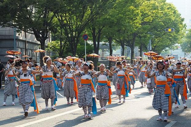 Photos: 傘踊り
