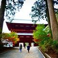 写真: 高野山大門の紅葉
