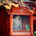 写真: 仁王門