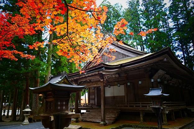 山王院の紅葉