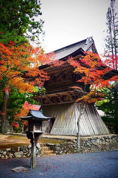 鐘楼の紅葉