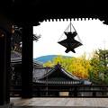 写真: 東本願寺