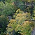 Photos: 橋の上からの景色