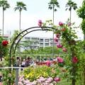 Photos: 長居植物園