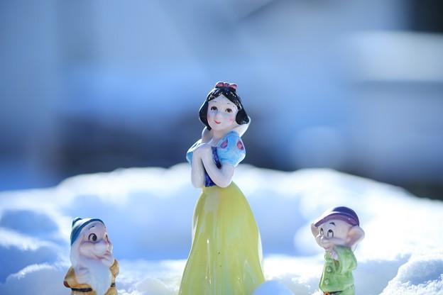 白雪姫、リベンジ