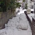 Photos: 雪捨て場は満杯