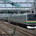 湘南新宿ラインE231系1000番台 K-41編成