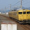 写真: 山陽線115系1000番台 T-13編成