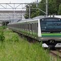写真: 横浜線E233系6000番台 H008編成