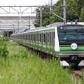 横浜線E233系6000番台 H001編成【横浜線開業110周年HM】
