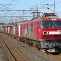 写真: EH500-53+コキ