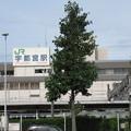 宇都宮駅 東口