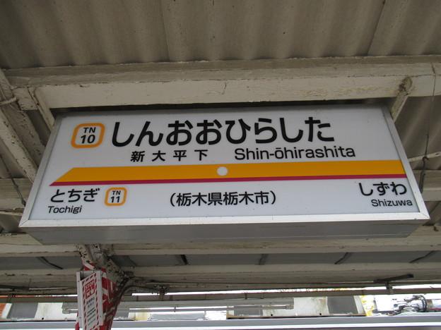 #TN10 新大平下駅 駅名標【下り】