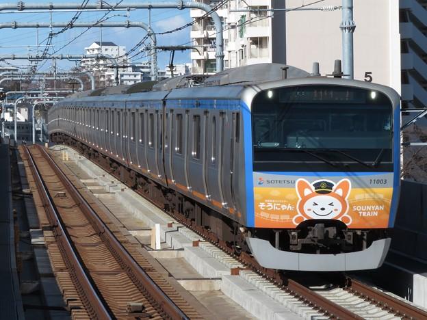相鉄線11000系 11003F【五代目そうにゃんトレイン】