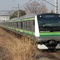 Photos: 横浜線E233系6000番台 H007編成