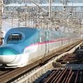 Photos: 東北新幹線E5系 U17+Z17編成