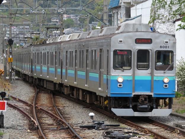 Photos: 伊豆急行8000系 8001F+8015F