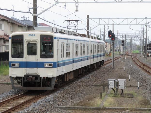 Photos: 東武小泉線8000系 8564F