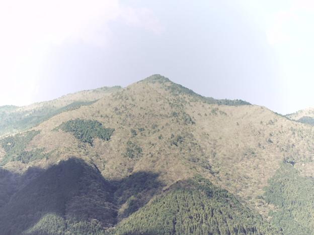 まわりの山