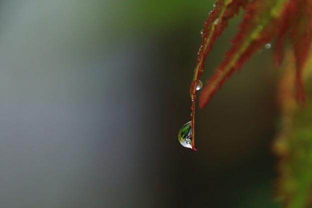 雨の日に1