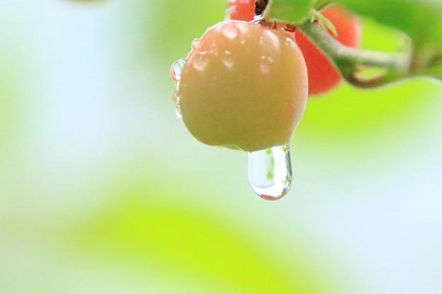 雨の日に4