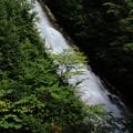Photos: しゃくなげの滝 1