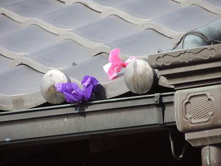 風に吹かれて屋根に。
