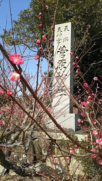 菅原神社。