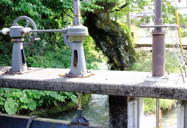 渡岸寺の水門