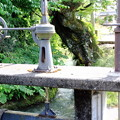 Photos: 渡岸寺の水門