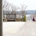 Photos: 春への誘い(いざない)