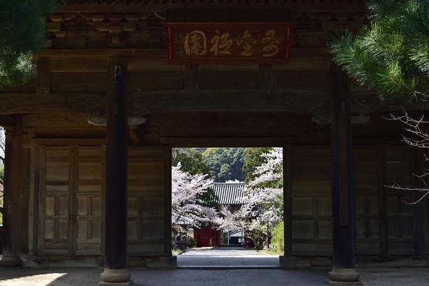 東光寺三門 2
