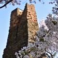 萩反射炉の桜 3