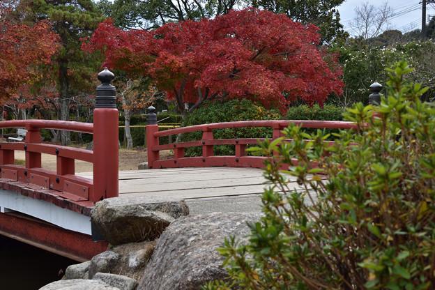 赤い橋と紅葉