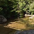 Photos: 紅葉谷川