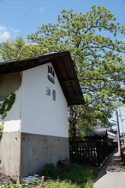 長井 平野川遊歩道 2