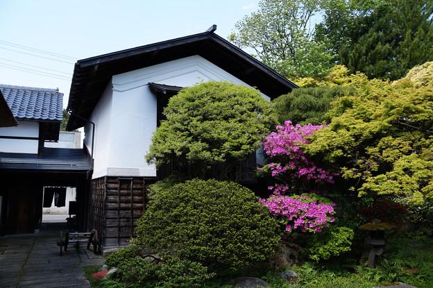 長井 丸大扇屋 3
