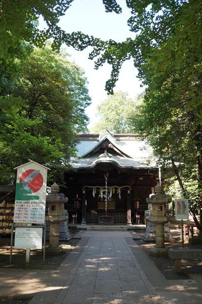 小金井神社 2
