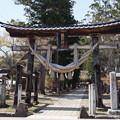 Photos: 新宮熊野神社